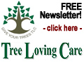 Tree Loving Care's tree care newsletter